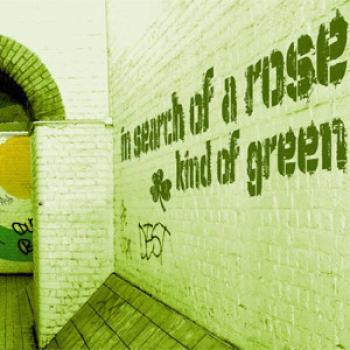 "In Search Of A Rose ""Kind Of Green"" CD"