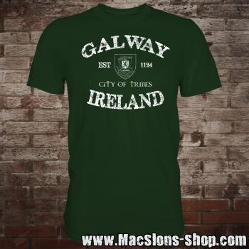 "Galway ""City Of Tribes"" T-Shirt (green)"